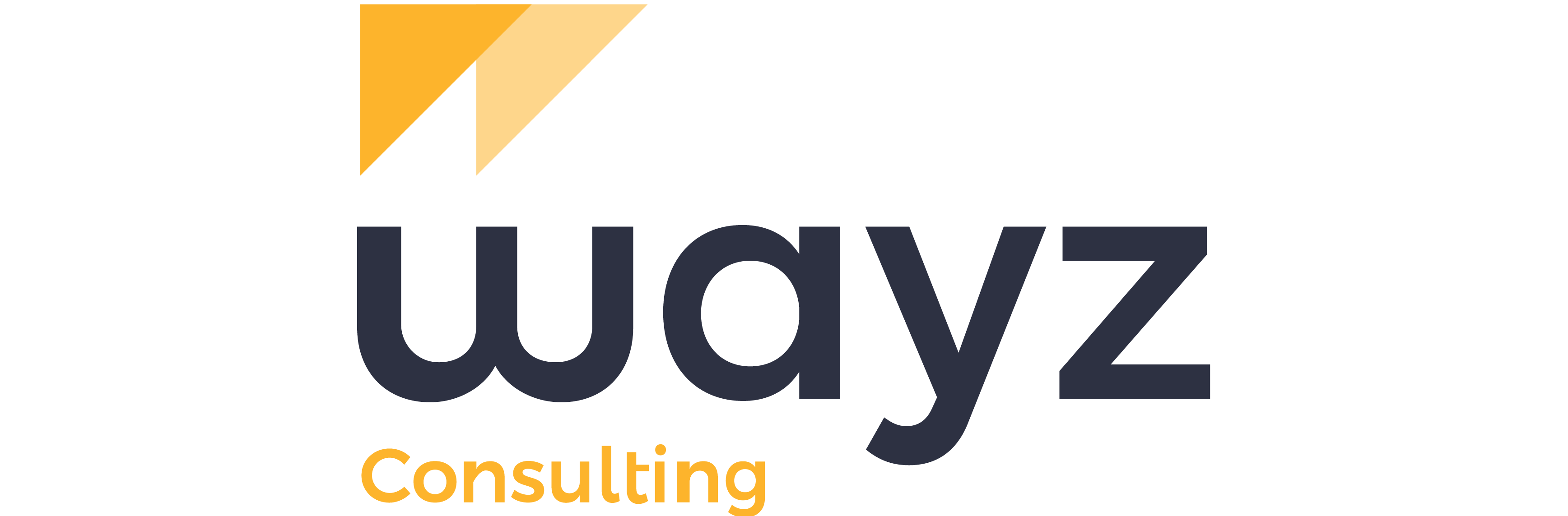 WayZ Consulting